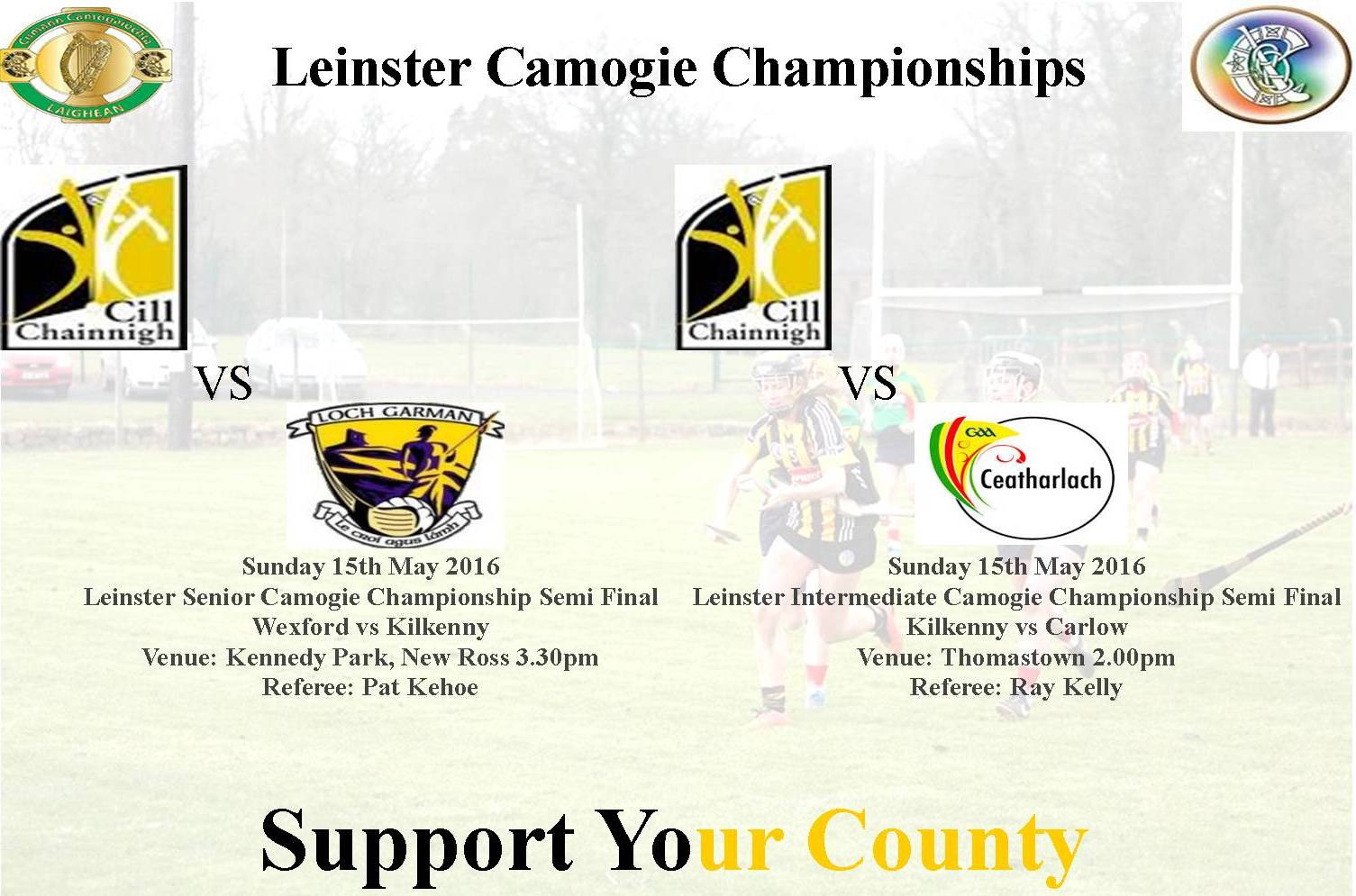 Leinster semi finals