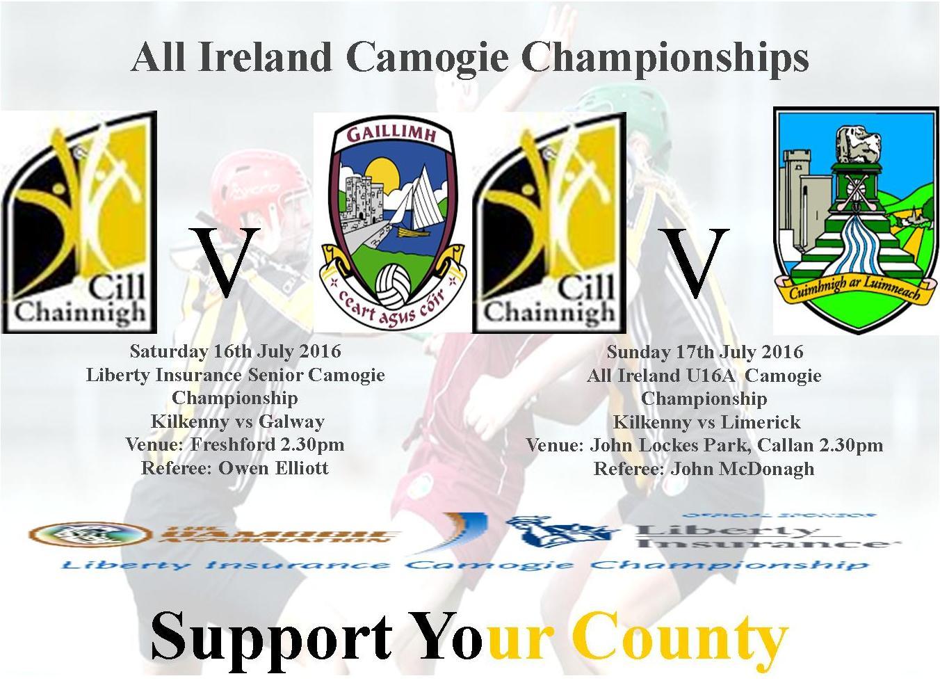 All Irealnd Senior Kilkenny vs Galway