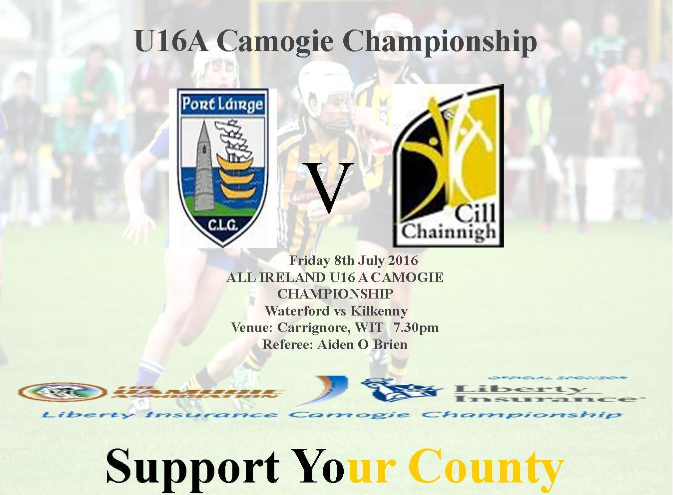 Camogie Poster U16A