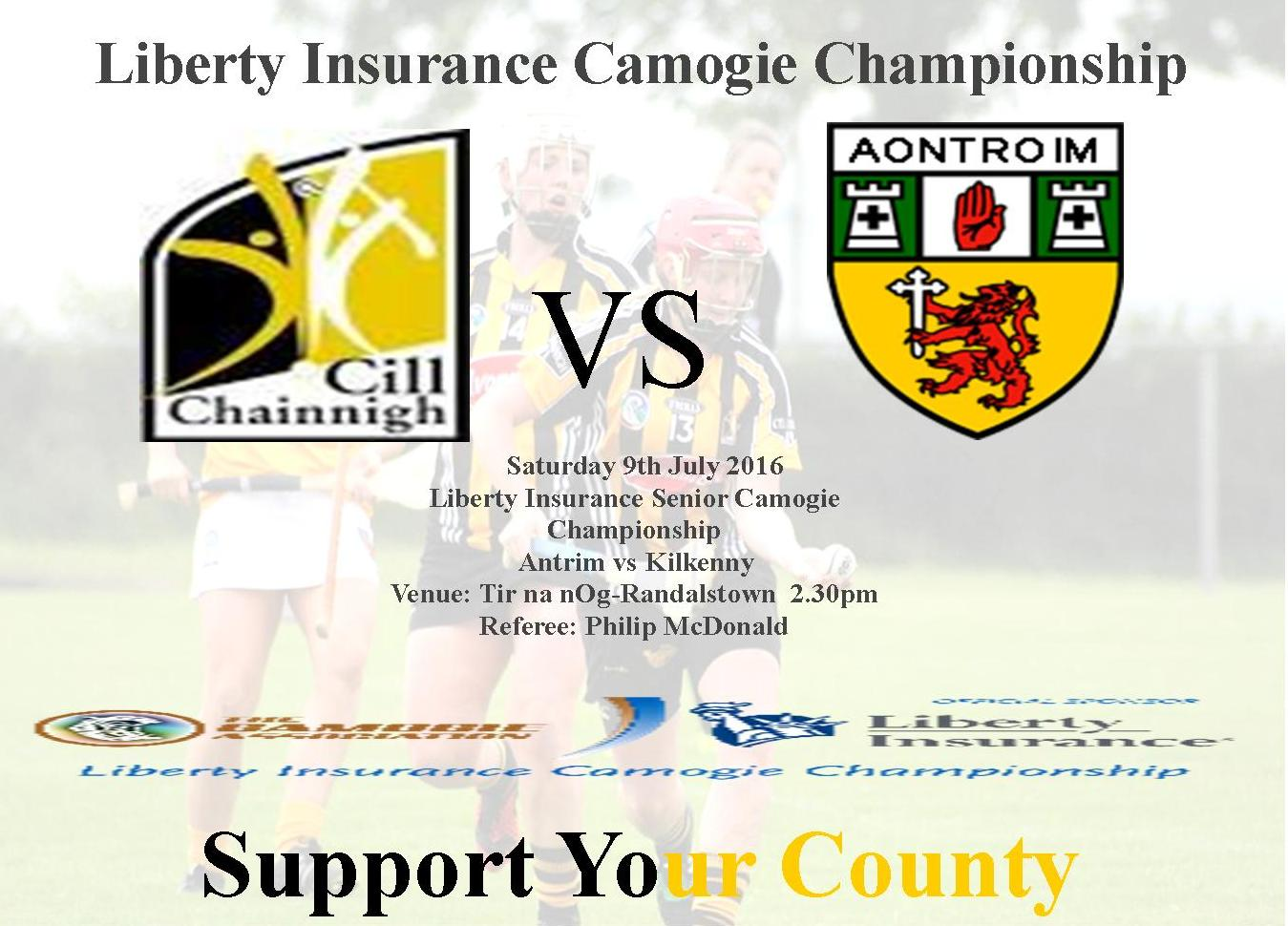 Camogie Poster