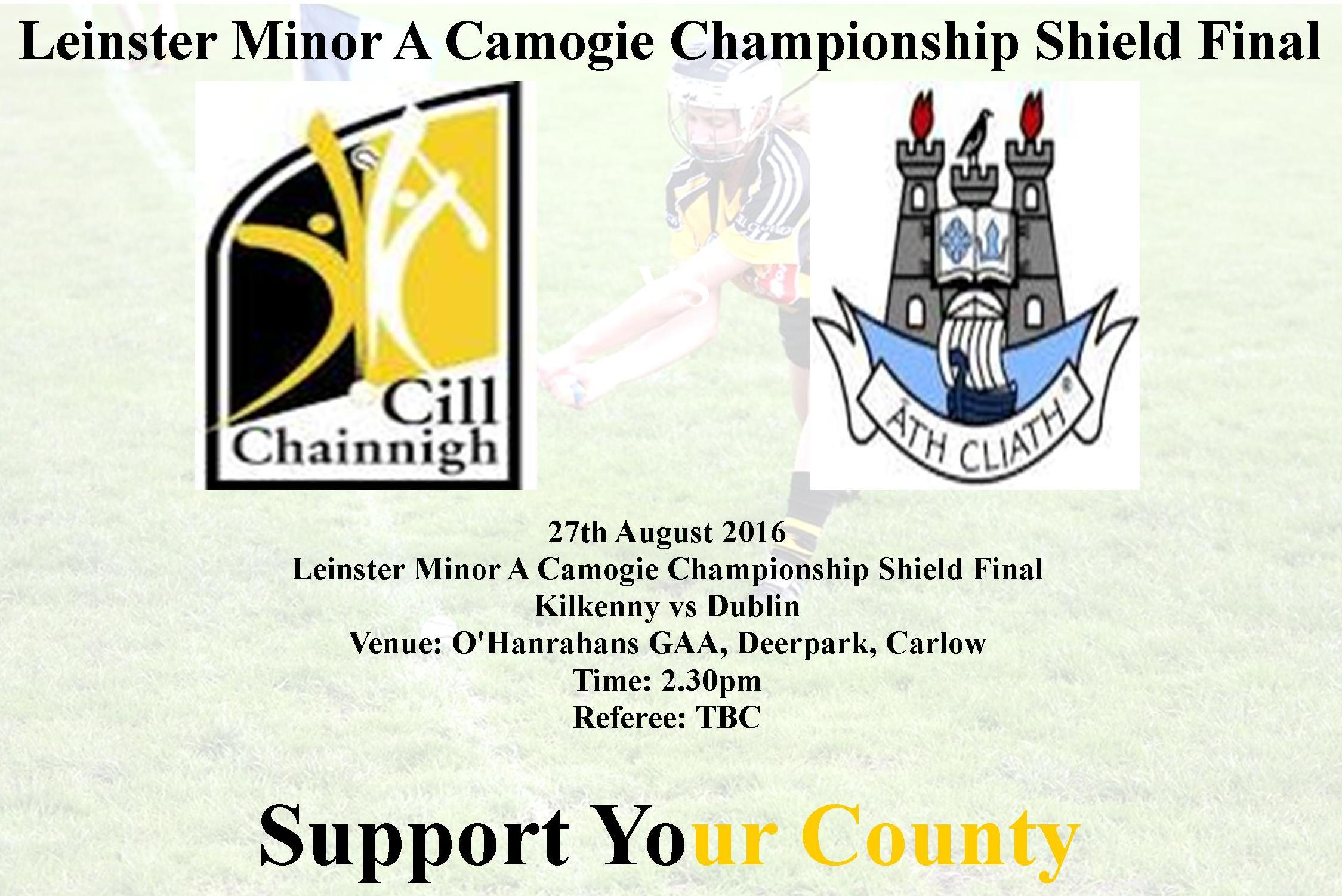 Leinster Minor A Camogie Championship Shield Final Kilkenny vs Dublin