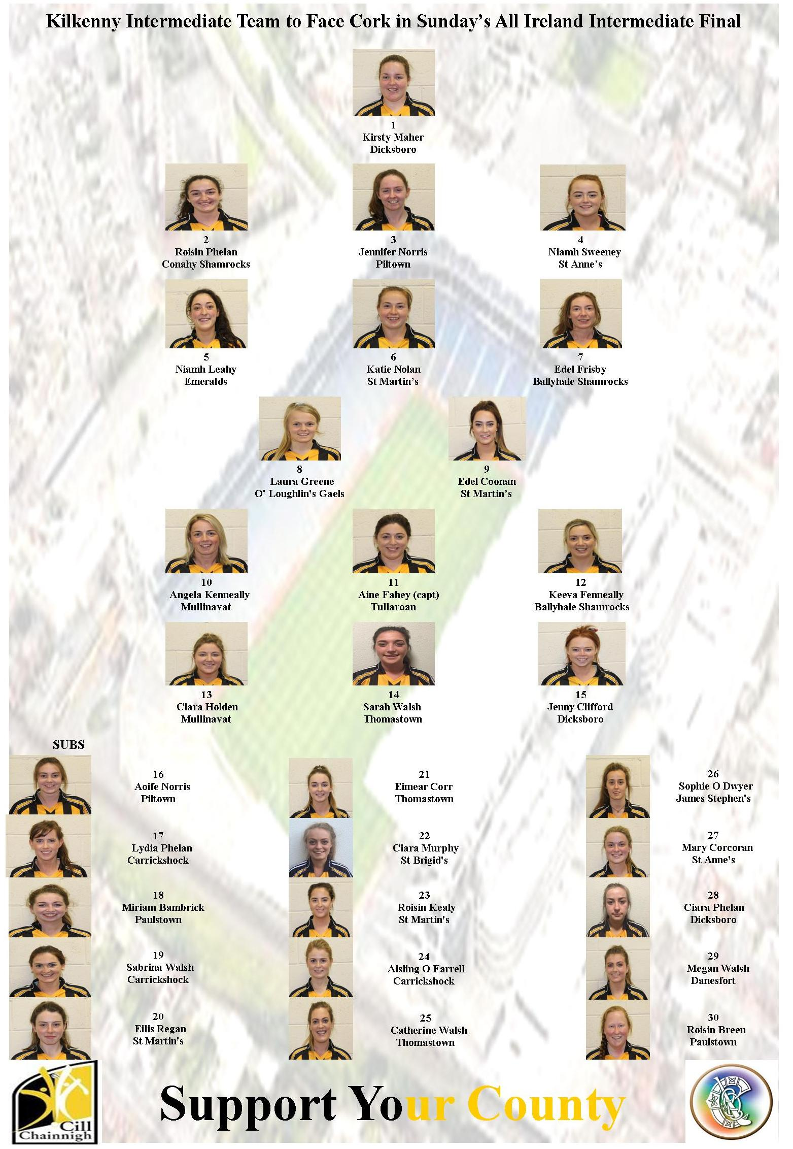 Kilkenny Intermedaite Team
