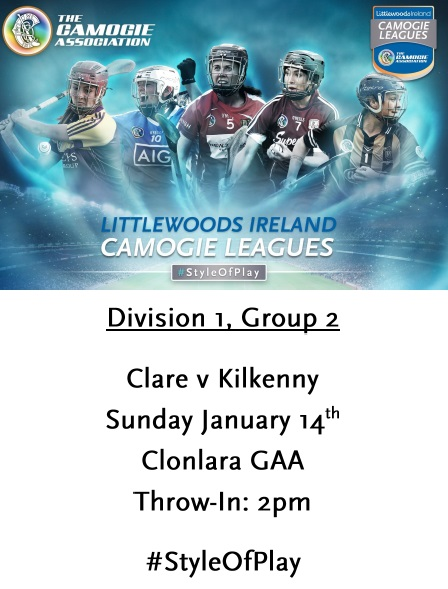 Clare v Kilkenny League 140118