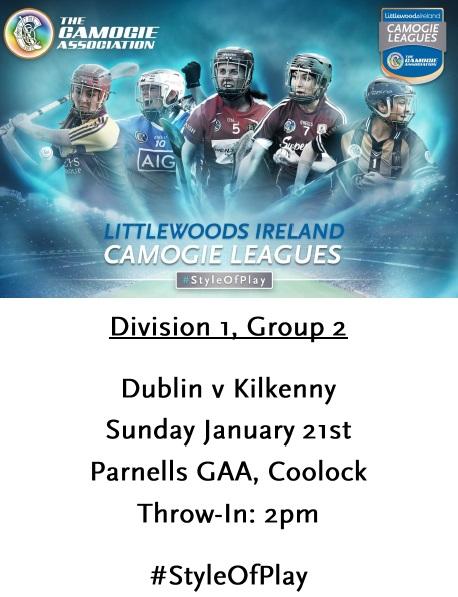 Dublin v Kilkenny League 210118