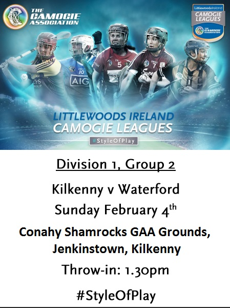 Kilkenny v Waterford League 040218