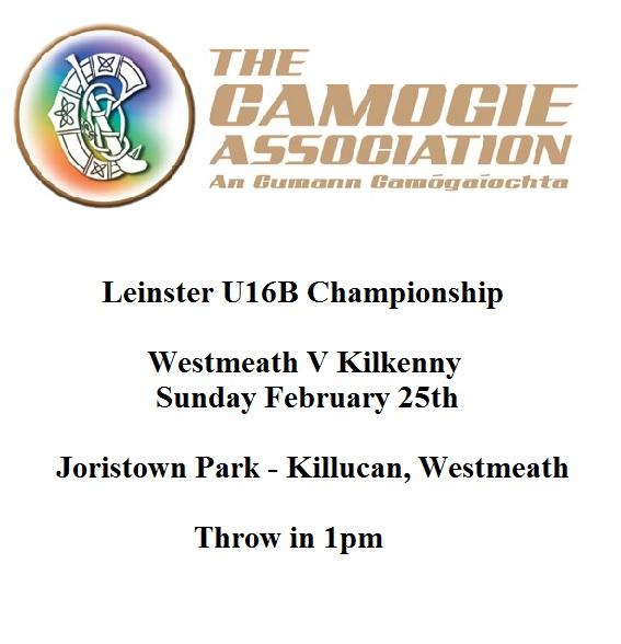 Kilkenny v Westmeath U16B Leinster Championship 250218