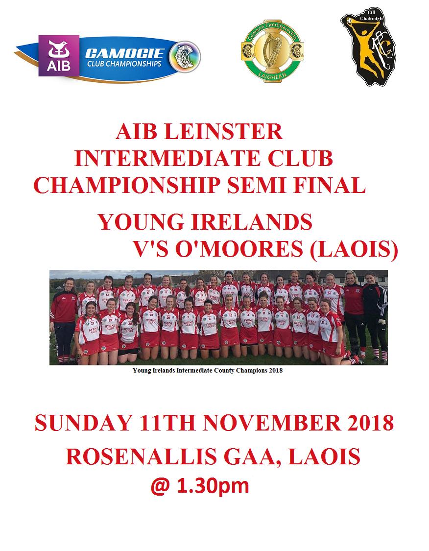 Intermediate Leinster Semi Final