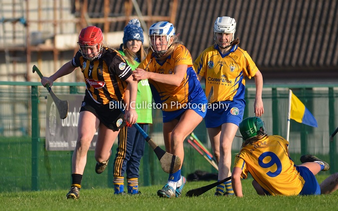 Billy Culleton Photography Kilkenny v Clare Camogie League 2019 (104)