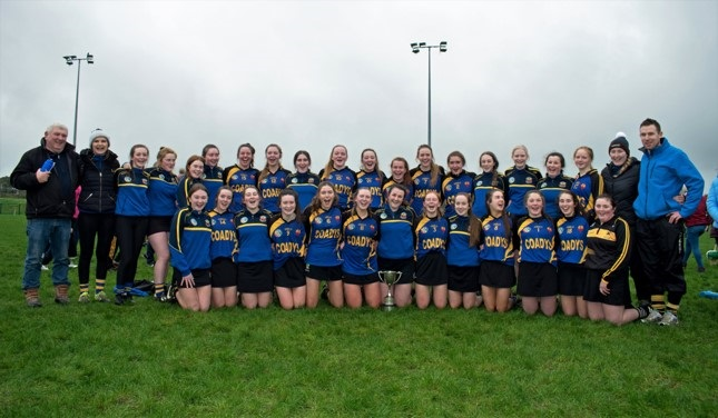 Castlecomer Community School Leinster Final