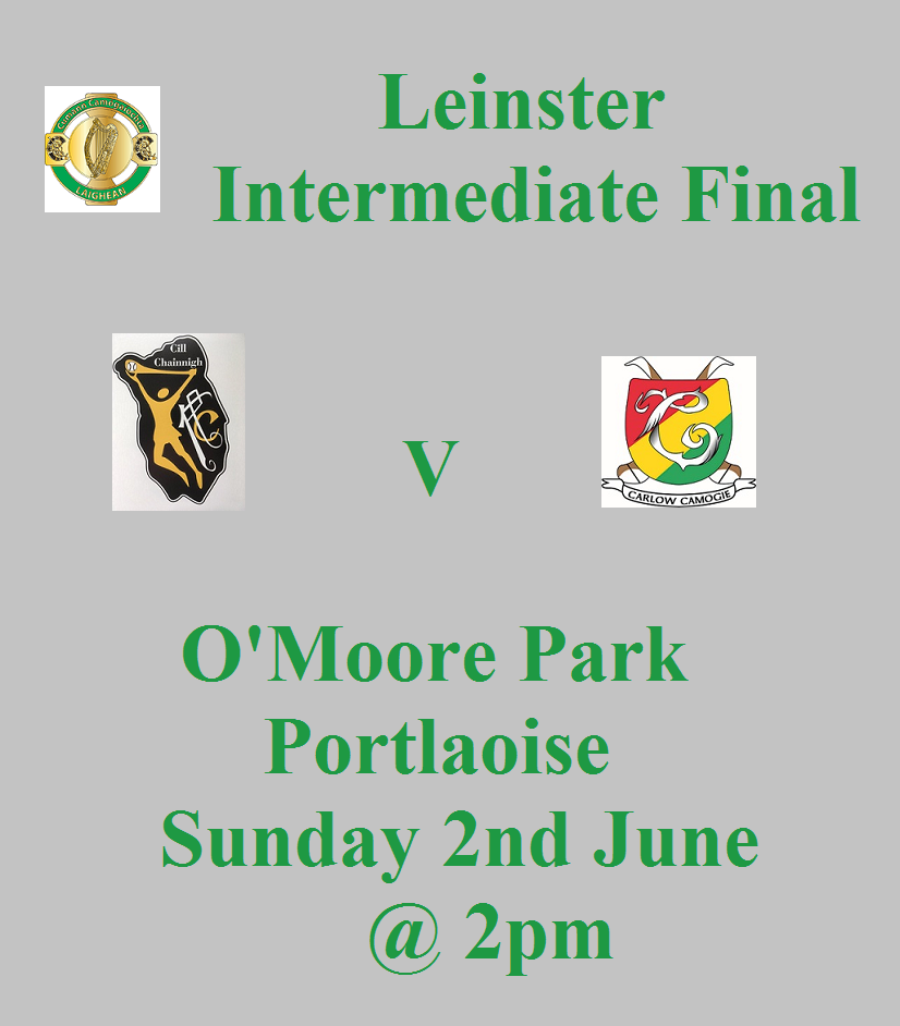 Kilkenny Intermediate Promotion Leinster Final 020619