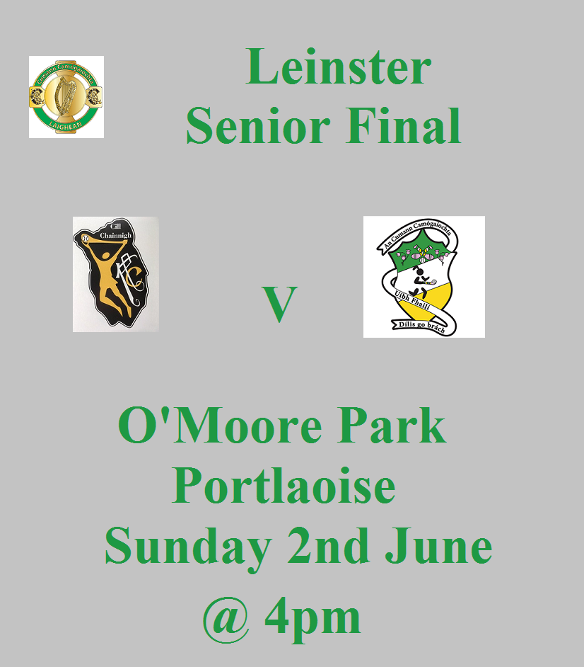 Kilkenny Senior Promotion Leinster Final 020619